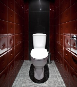 Toilet in Red Tile Bathroom